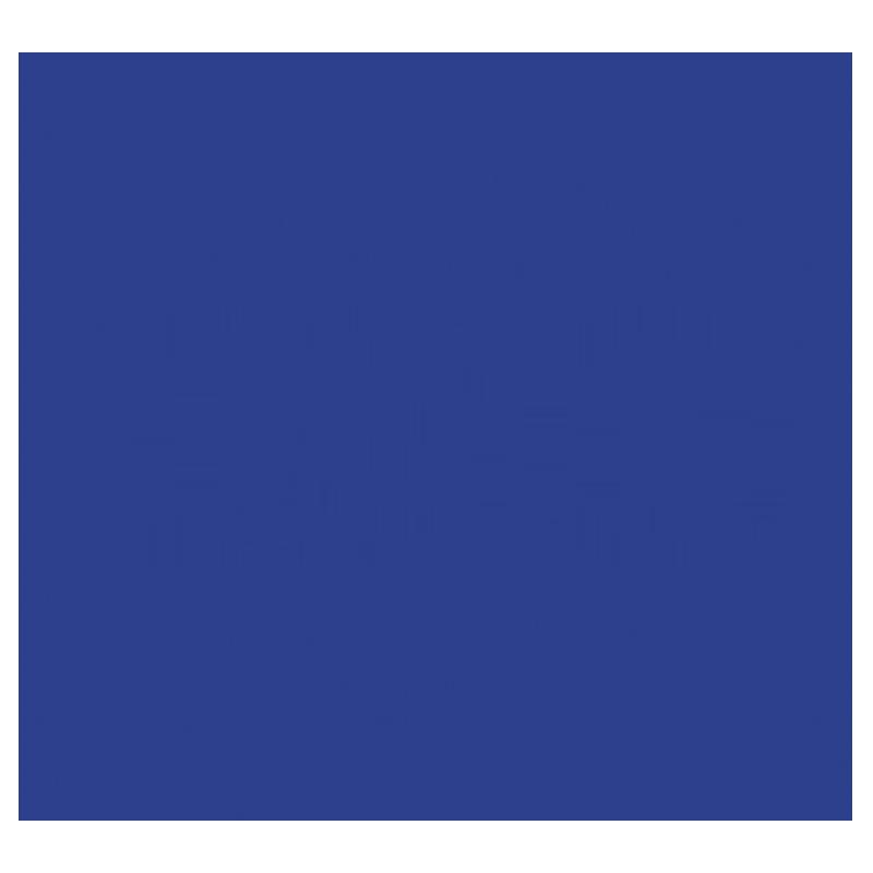 ISO logo 800x800